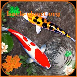 3D Koi Fish Wallpaper HD - 3D Fish Live Wallpapers icon