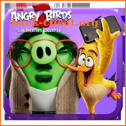 Angry Birds 2 Chuck Themes & Live Wallpapers icon