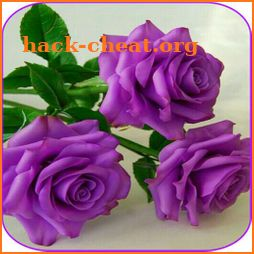 Beautiful flowers and roses pictures Gif icon