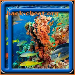 Coral Reef Live Wallpapers icon