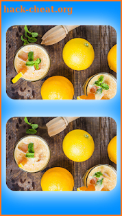 Find 5 Differences - Spot The Differences Game screenshot