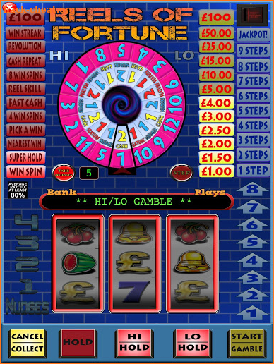 Reels of Fortune Fruit Machine screenshot